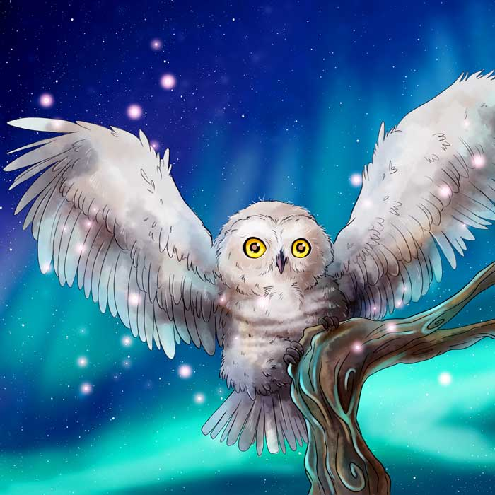 Kinderbuchillustration Magische Eulen Abenteuer