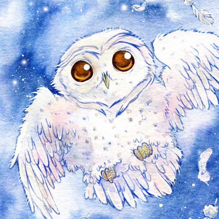 Kinderbuchillustrationen Hugo die super Eule